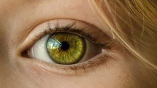 Oko dominujące